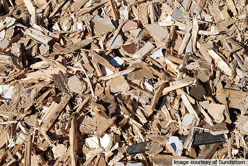 Feedstock ingredients for the plant will include forest residual chips, dry agricultural and urban wastes.