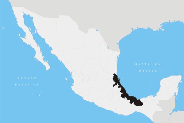 The Inter-American Development Bank (IDB)-funded Ethylene XXI project is located in the Mexican state of Veracruz. Image courtesy of Yavidaxiu.