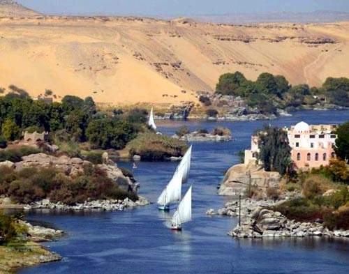 Egypt imports around 900,000t of fertiliser per year but the government would prefer fertiliser to come from domestic sources.