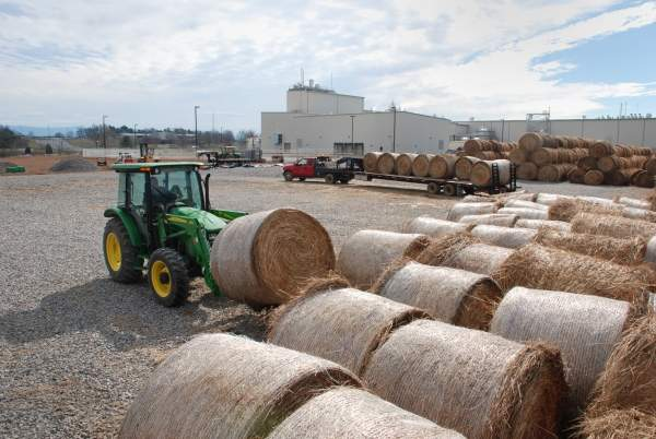 Bales of switchgrass feedstock at the Color Wheel Farm in Monroe County, Tennessee, prior to their processing in the adjacent Biomass Innovation Park. Image courtesy of The University of Tennessee College of Agricultural Sciences and Natural Resources.