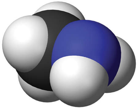 A molecule of methylamine; this needs to be produced prior to choline chloride.