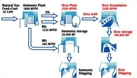 The ammonia plant was to use Halder Topsoe's technology and Snamprogetti was also to supply technology for the urea plant.