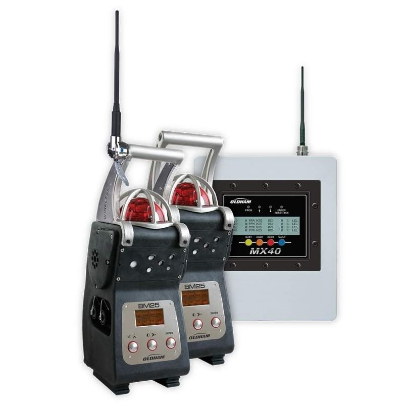BM 25 Wireless gas monitor