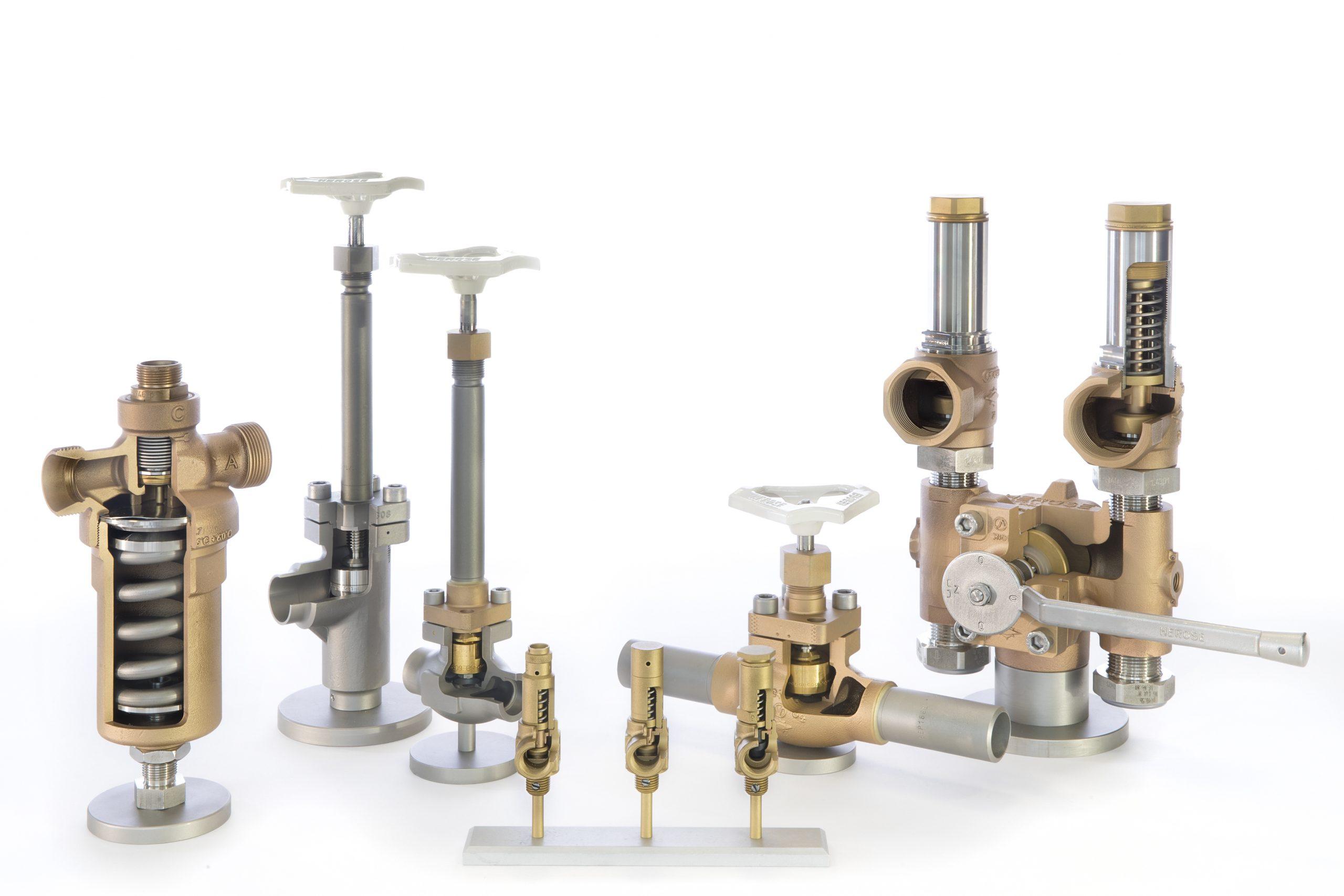 Cryogenic air gases valves