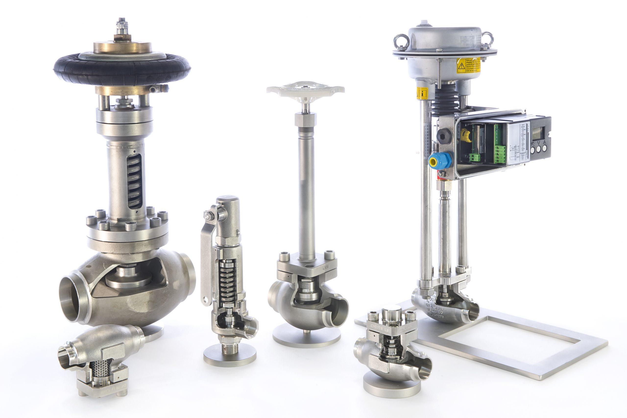 cryogenic LNG valves