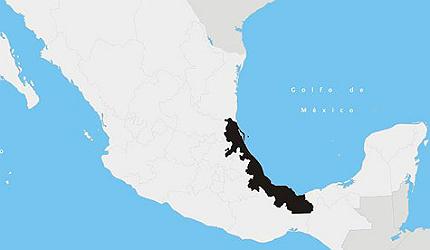 Braskem-Idesa Integrated Polyethylene Production Plant, Veracruz